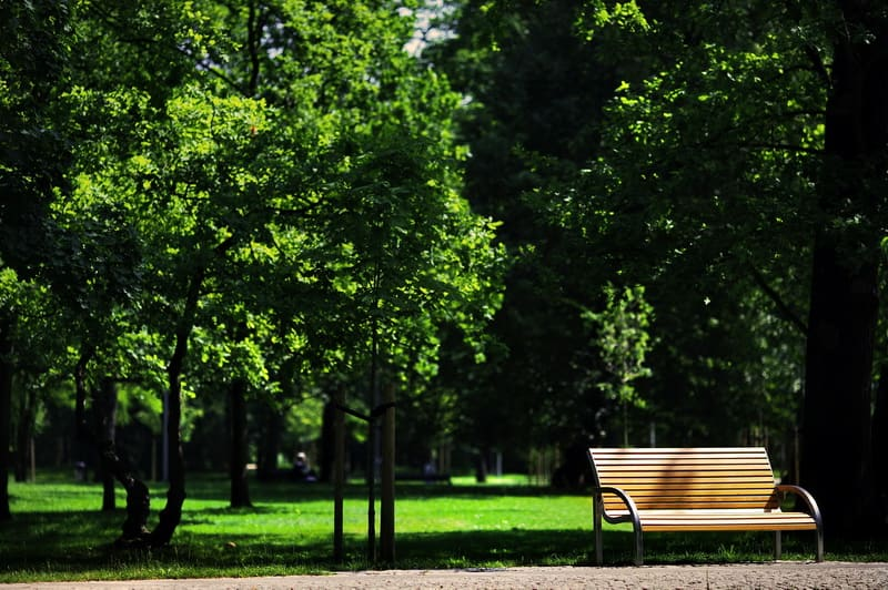 Park Konstancin 08